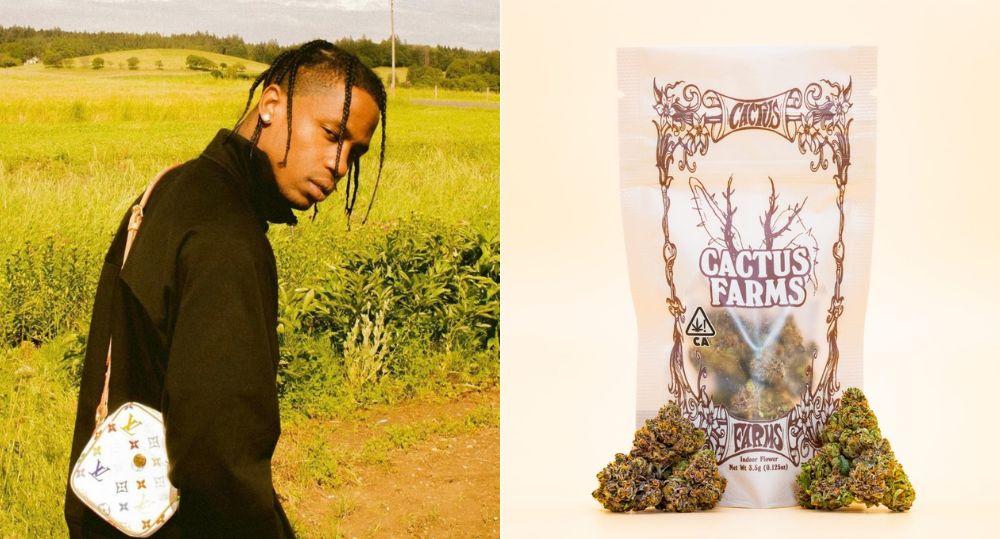 travis-scott-lance-sa-propre-gamme-de-cannabis.jpg
